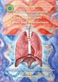 Das Atemsystem - Leben und Bewusstsein, Rosina Sonnenschmidt