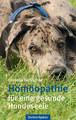 Homöopathie für eine gesunde Hundeseele, Cornelia Tschischke