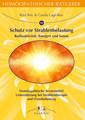 Homöopathischer Ratgeber 13: Schutz vor Strahlenbelastung, Radioaktivität, Röntgen und Sonne, Ravi Roy / Carola Lage-Roy