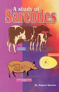 A Study of Sarcodes/Rajeev Saxena