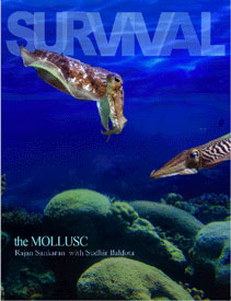 Survival - The Mollusc/Rajan Sankaran