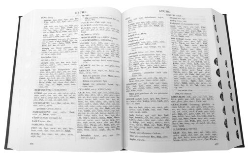 Repertorium der homöopathischen Arzneimittel/James Tyler Kent