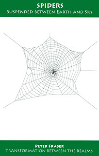 Spiders - Suspended between Earth and Sky/Peter Fraser