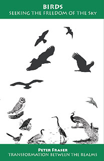 Birds, Seeking the Freedom of the Sky/Peter Fraser