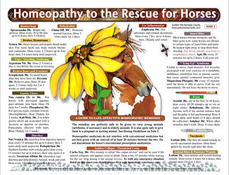 Homeopathy to the Rescue for Horses chart/poster/Lorelei Whitney