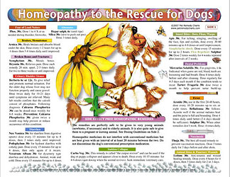 Homeopathy to the Rescue for Dogs chart/poster/Lorelei Whitney