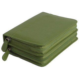 120 - Remedy case in high-quality cowhide - green