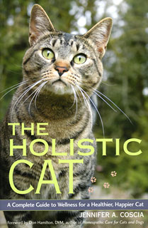 The Holistic Cat, Jennifer A. Coscia
