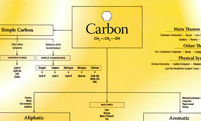 Chart of Carbon Remedies/Roger Morrison