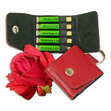 Rose Kit 5 in Red Leather Key Ring - Maute/Homeoplant