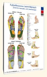 Fußreflexzonen beim Menschen, Carola Krokowski
