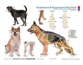 Acupressure & Acupuncture Dog Chart/Carola Krokowski