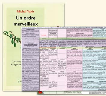 Michal Yakir: Tableau du règne végétal et son fascicule explicatif