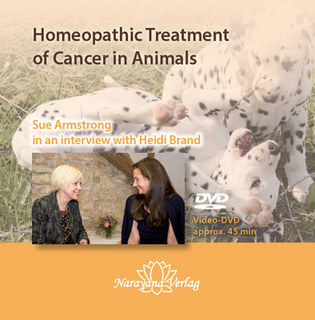 Homeopathic Treatment of Cancer in Animals - 1 DVD, Sue Armstrong