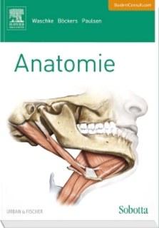 Sobotta Lehrbuch Anatomie/Jens Waschke / Tobias M Böckers / Friedrich Paulsen