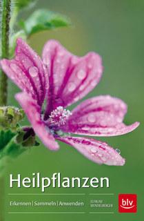Heilpflanzen, Elfrune Wendelberger