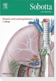 Sobotta Lernkarten, Organe, Leitungsbahnen/Lars Bräuer