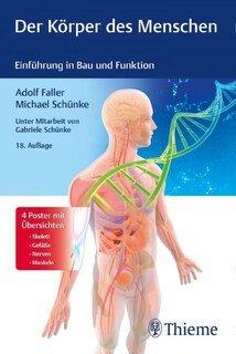 Der Körper des Menschen/Adolf Faller / Michael Schünke