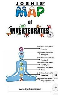 Joshis' MAP of Invertebrates/Bhawisha Joshi / Shachindra Joshi