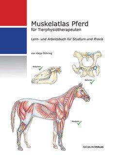 Muskelatlas Pferd/Katja Gühring