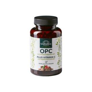 OPC Pinienrinden Extrakt - 500 mg - 120 Kapseln - von Unimedica/