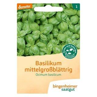 Basilikum mittelgroßblättrig - demeter-bio - bingenheimer saatgut
