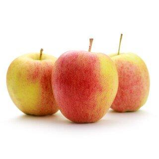 Äpfel Bio Jonagold 65 + - 3 kg/